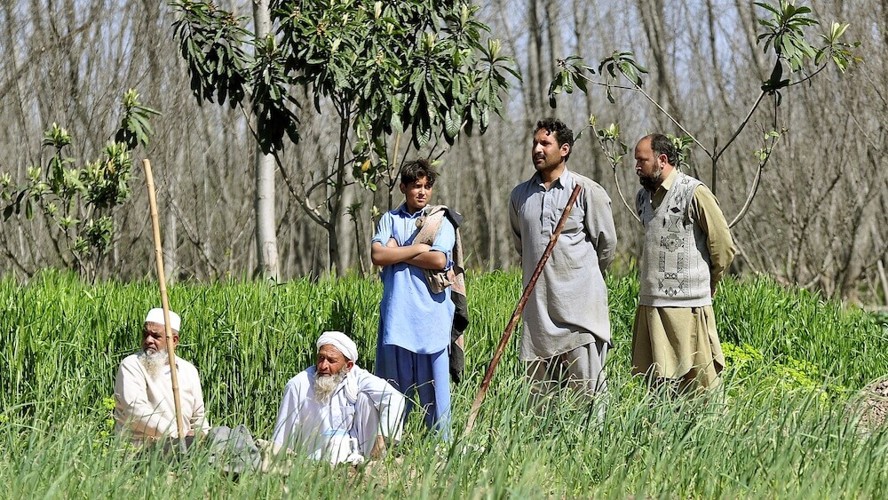 Pakistan Just Hired 63,000 People to Plant 10 Billion Trees