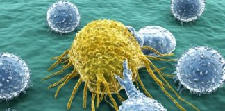 The Link Between Cancer and Climate Change