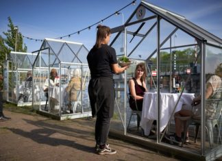 Amsterdam Restaurant Serves Vegan Meals in Quarantine Greenhouses