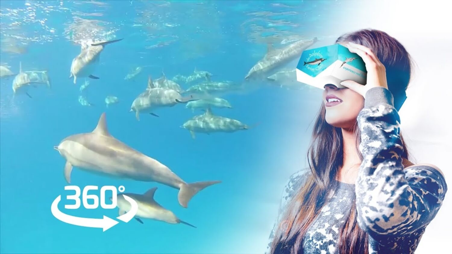 This New VR Experience Offers Cruelty-Free Swimming With Dolphins