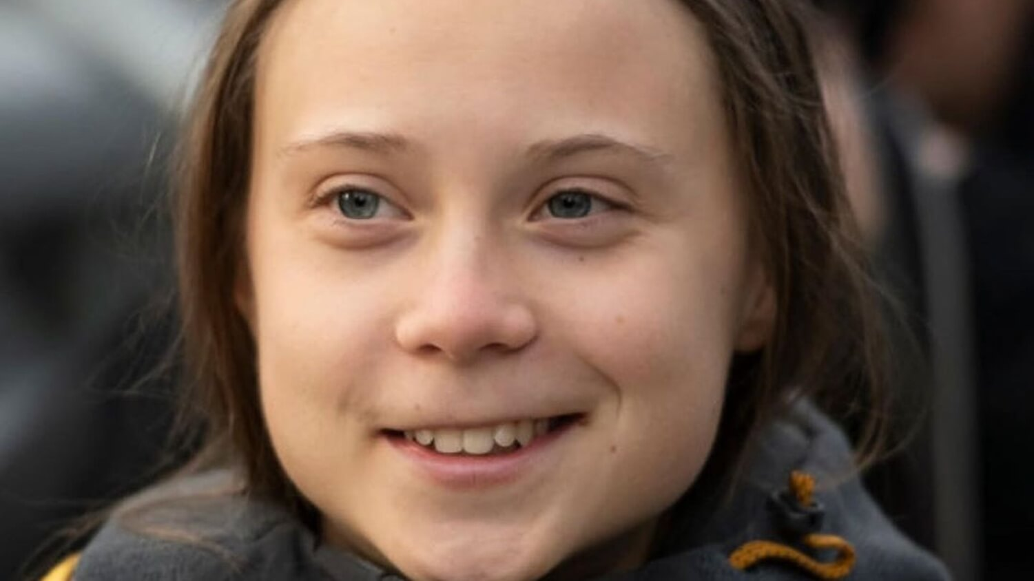 Scientists Name New Spider Species After Greta Thunberg