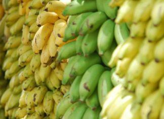 Hungarian Startup Makes Vegan Deli Meat From Bananas