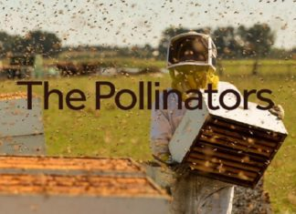 New Documentary 'The Pollinators' Follows Billions of Bees