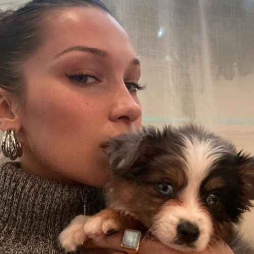 Bella Hadid Wants to Be a Taste-Tester for Vegan Nuggets Brand Nuggs