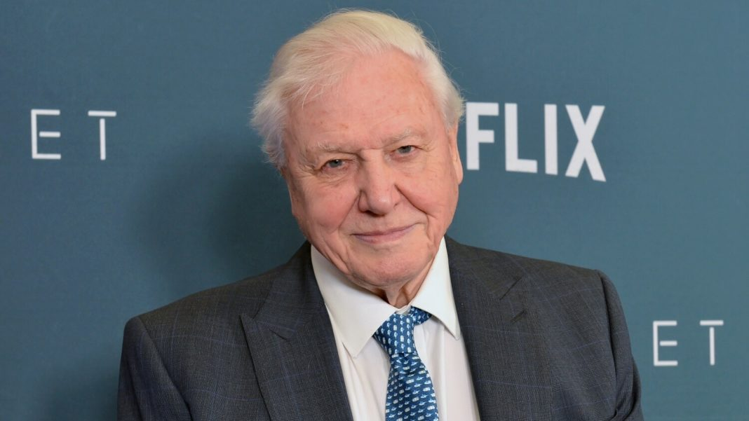 Why David Attenborough Wants You to Go Plant-Based for the Planet
