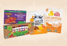 11 Vegan Fruit Snacks Kids (and You) Will Love