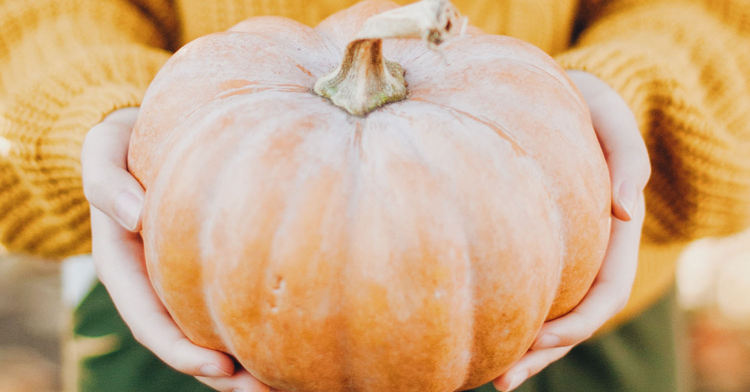 10 Things You Never Knew You Could Do With Pumpkin