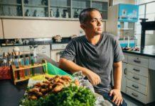 These Solar Windows Turn Food Waste Into Renewable Energy