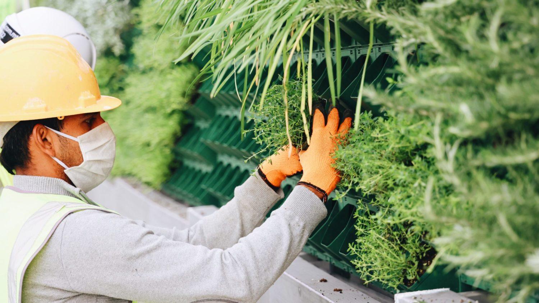 How Malta's Urban Greening Projects Serve the Community's Mental Health