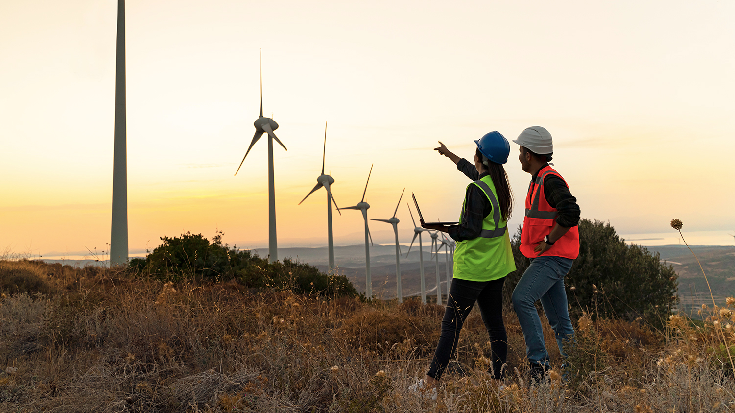 Photo shows two workers in hi-vis jackets and helmets pointing at a row of wind turbines. A new Illinois law plans to phase out fossil fuels in favor of clean energy such as wind.
