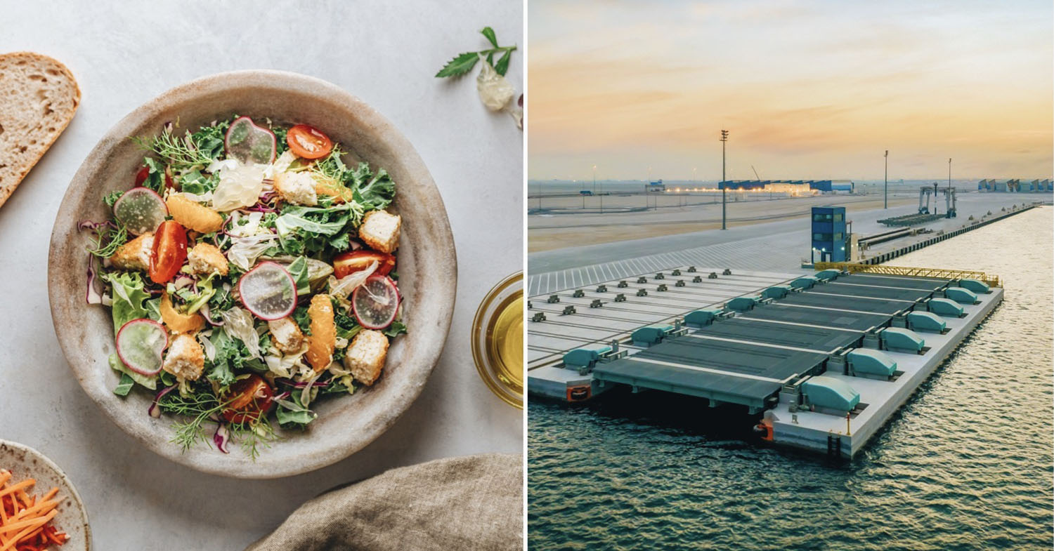Split image of an Eat Just cultured chicken salad (left) and Qatar, the home of the brand's new cell-based meat plant.