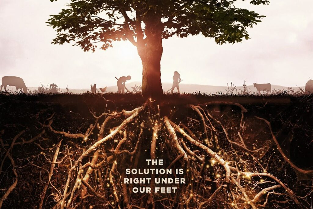 Image: poster for the 'Kiss the Ground' movie, which shows a tree with deep roots.